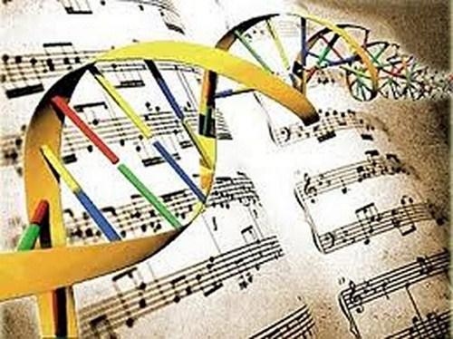 dna in musica