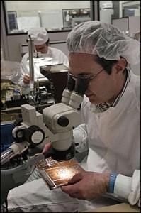 ricerca caglairitana sul journal of neuroscience