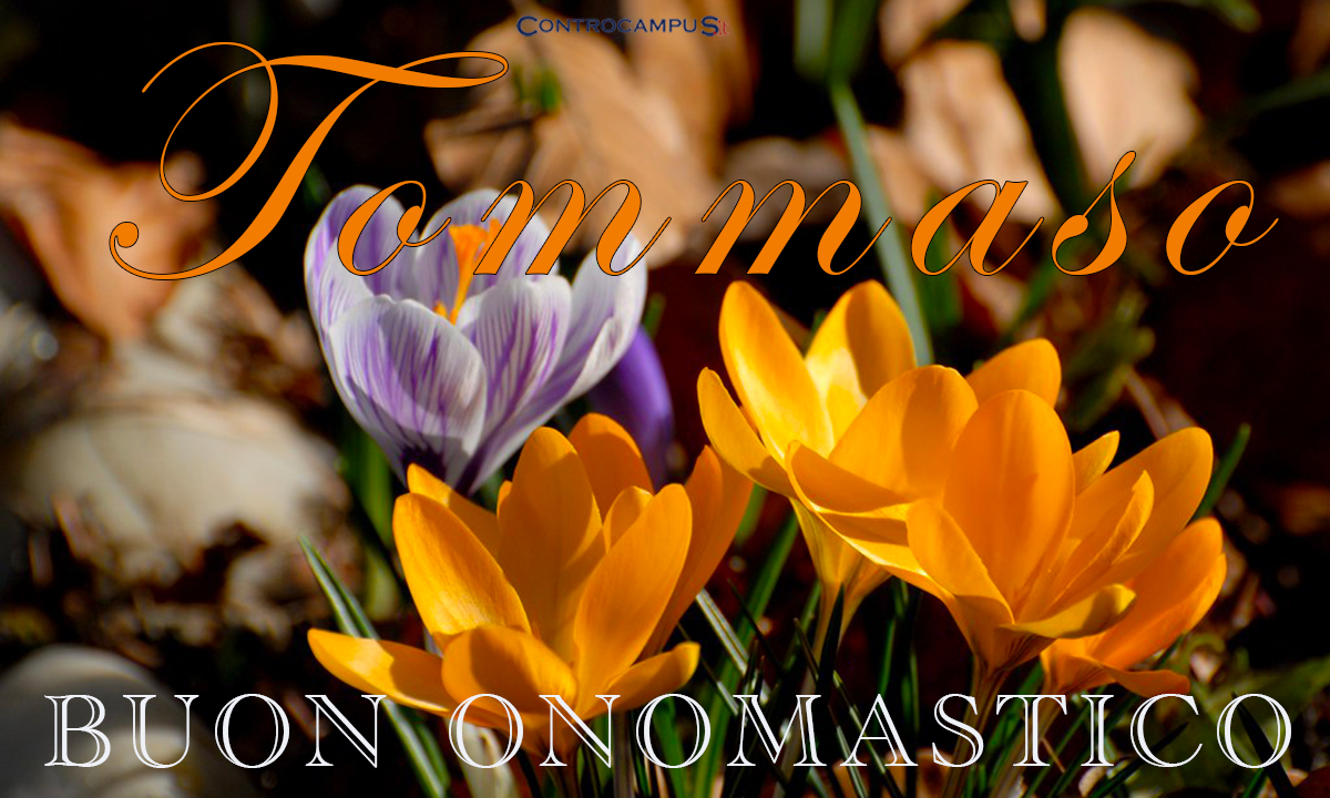 Immagini auguri buon onomastico per San Tommaso