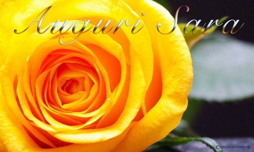 Immagini auguri buon onomastico Sara