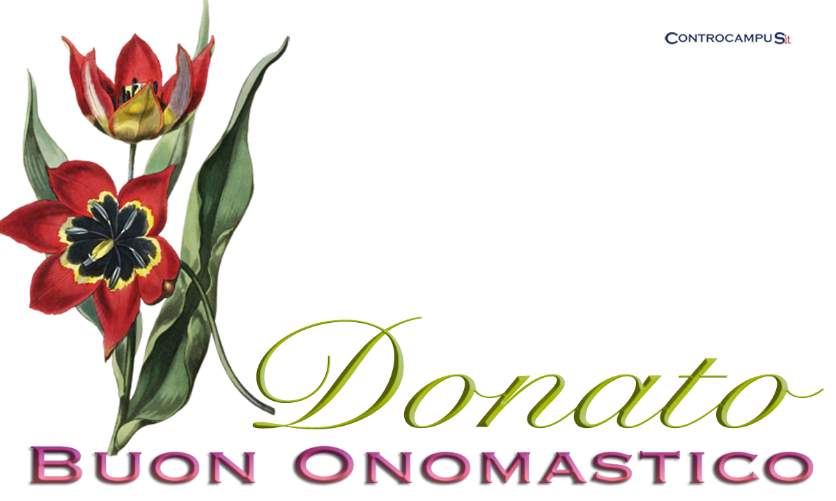 Immagini auguri buon onomastico per San Donato
