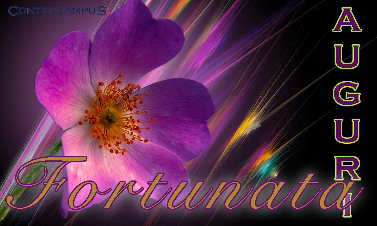 Immagini auguri buon onomastico per Santa Fortunata