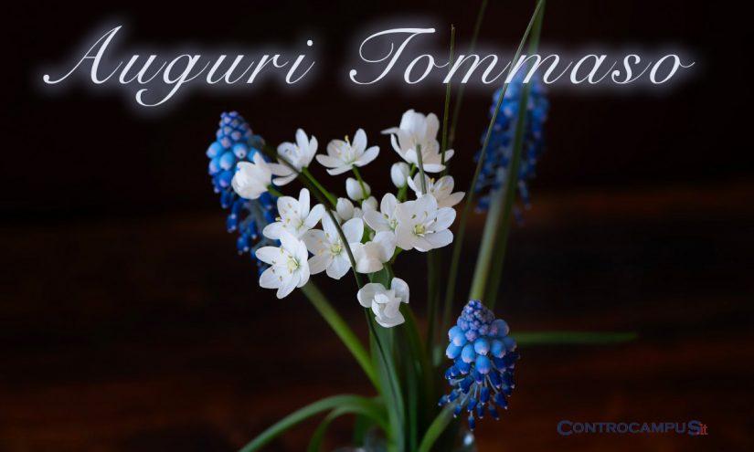 Immagini auguri onomastico Tommaso