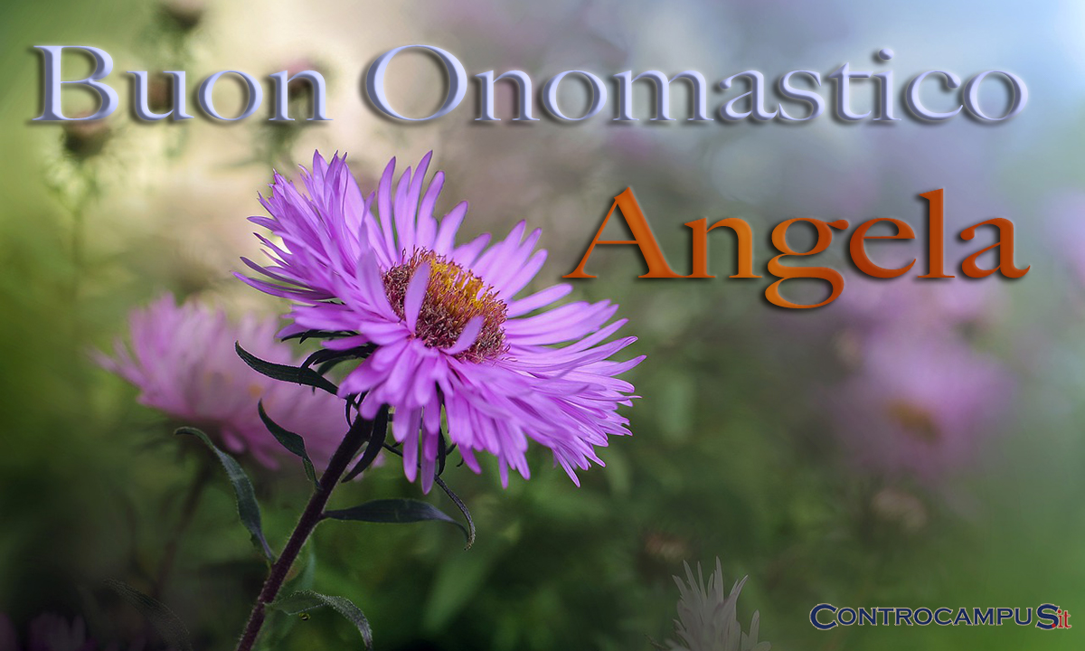 Immagini auguri onomastico per Sant Angela