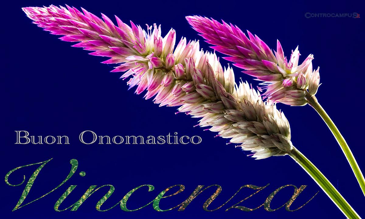 Immagini Auguri Onomastico Vincenza