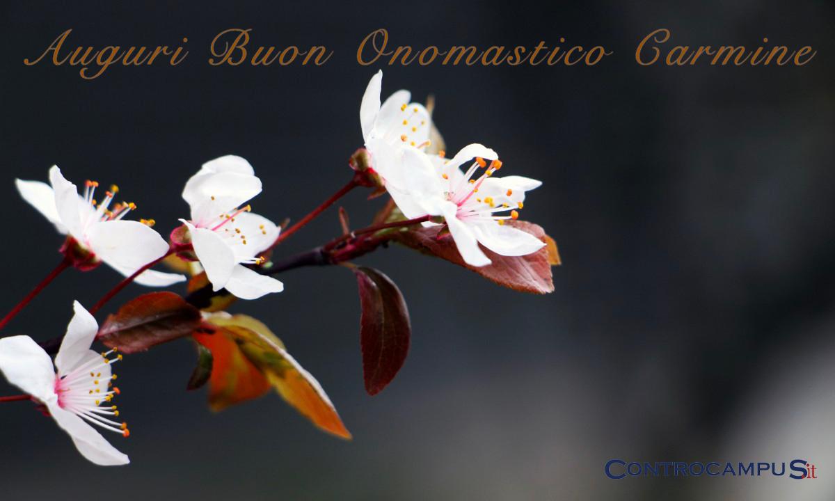 Immagini Auguri Buon Onomastico Carmine
