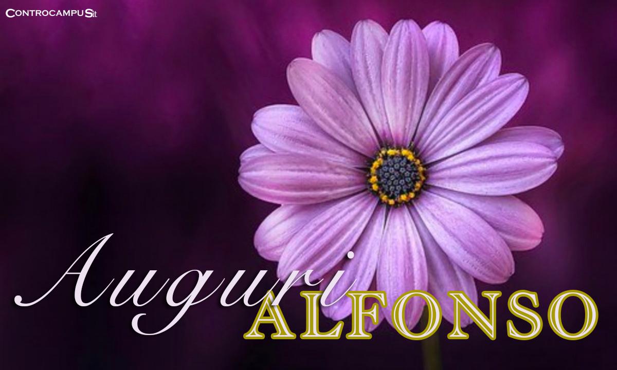 Immagini buon Onomastico Alfonso