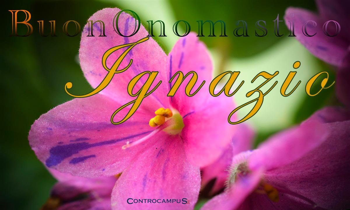 Immagini auguri buon onomastico per Sant Ignazio