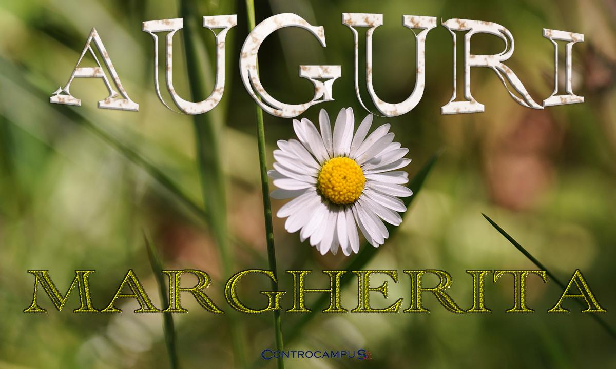Immagini Auguri Margherita