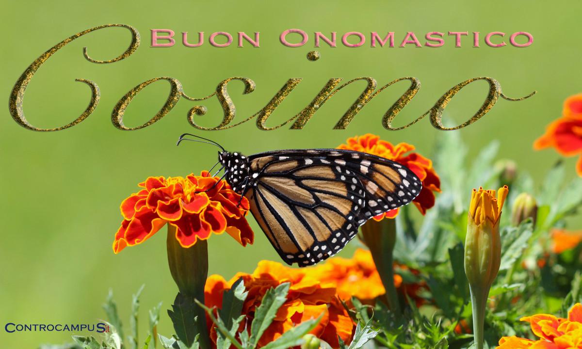 Immagini auguri buon onomastico per San Cosimo
