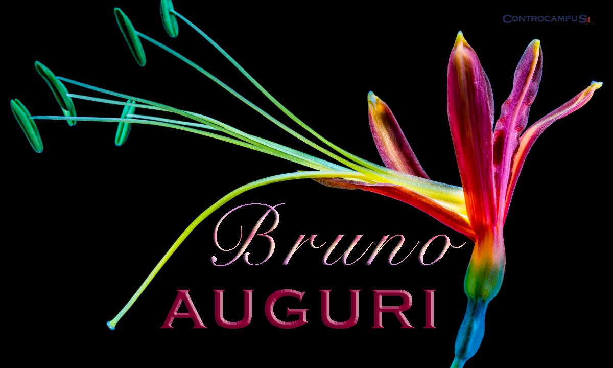 Immaigni auguri buon onomastico per San Bruno