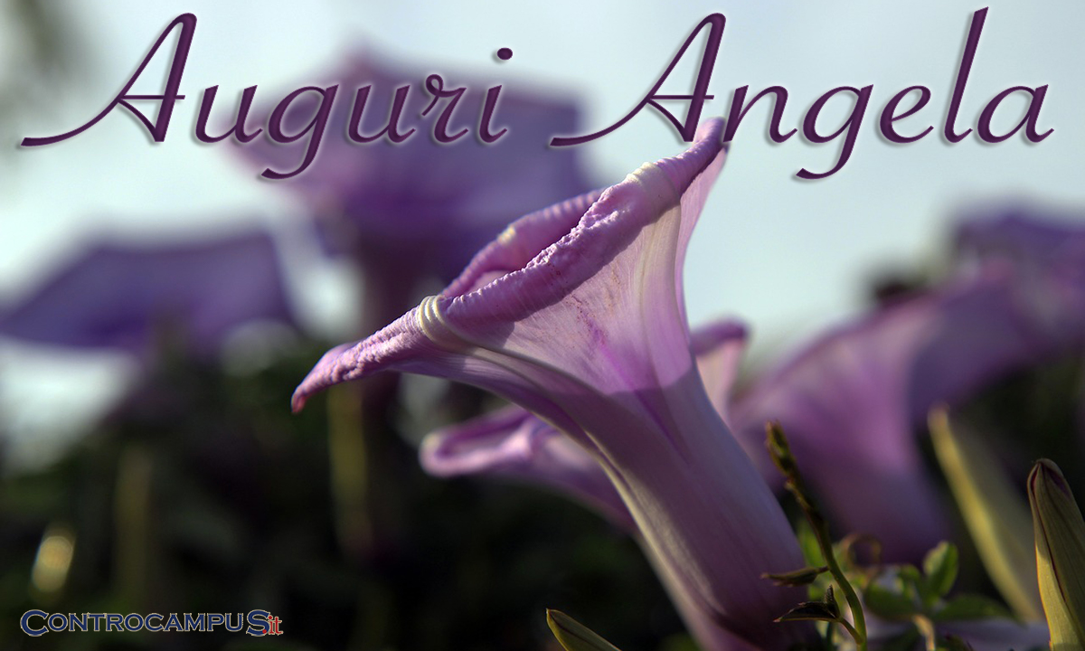 Immagini auguri onomastico Angela