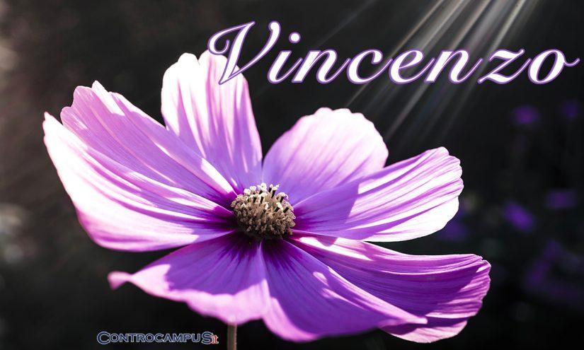 Immagini auguri buon onomastico Vincenzo ed Enzo