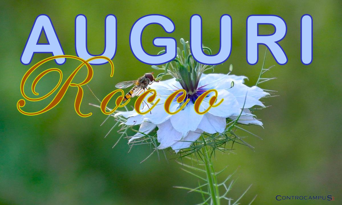 Immagini Auguri Rocco