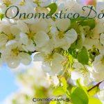 Immagini auguri buon onomastico per Santa Dorotea
