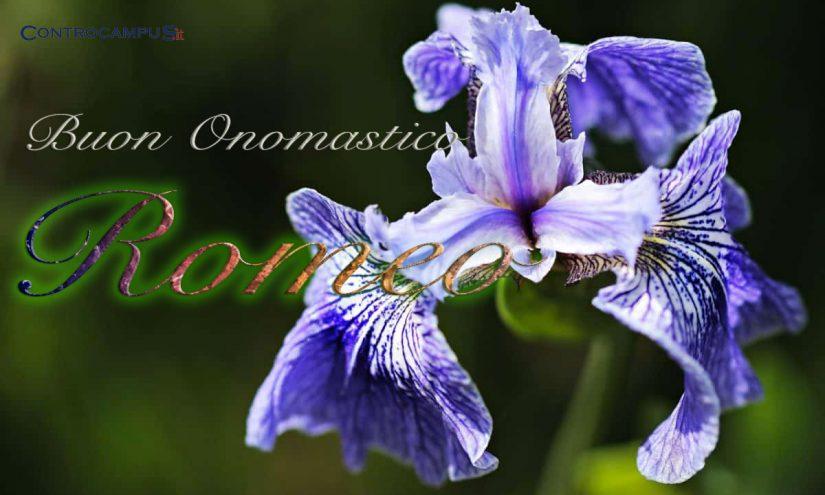 Immagini auguri onomastico San Romeo