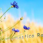 Immagini auguri buon onomastico per San Romolo