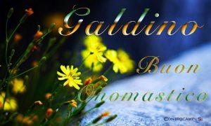 Immagini auguri buon onomastico per San Galdino