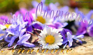 Immagini auguri buon onomastico per Sant Annibale