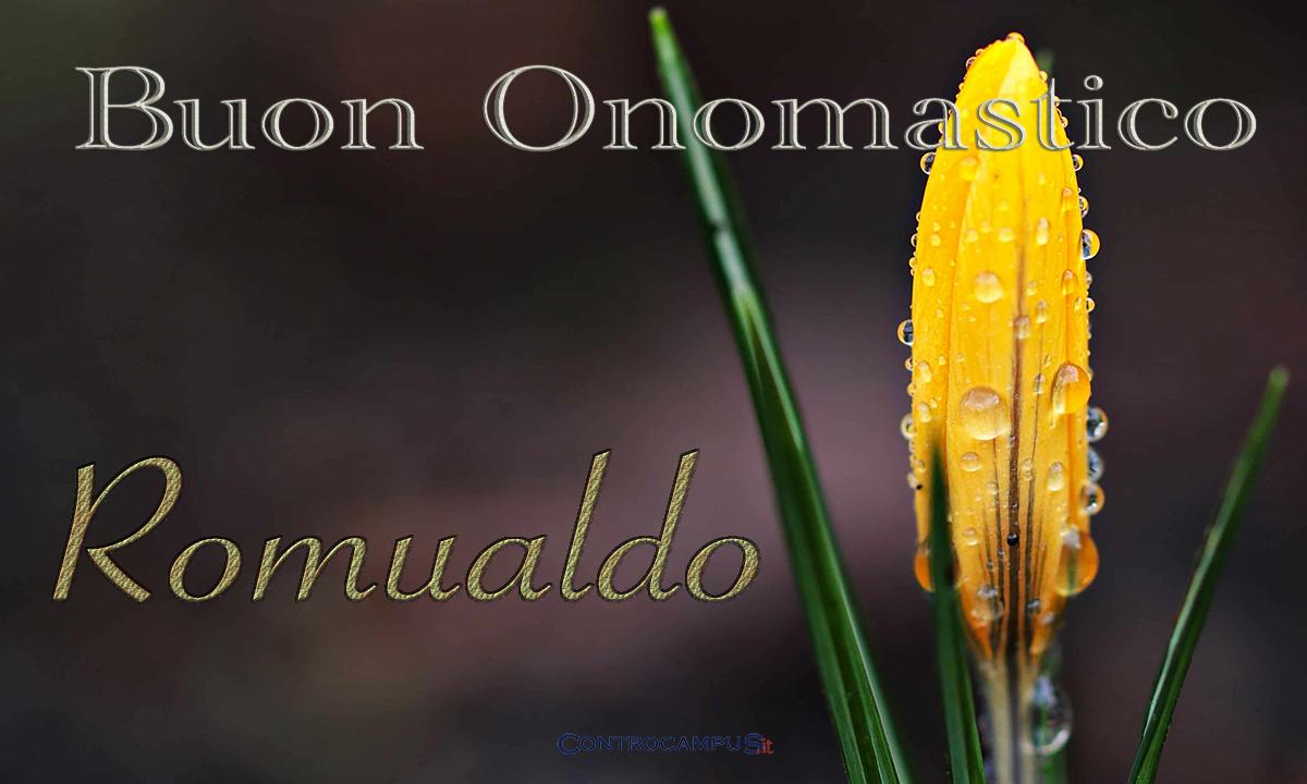 Immagini auguri buon Onomastico per San Romualdo