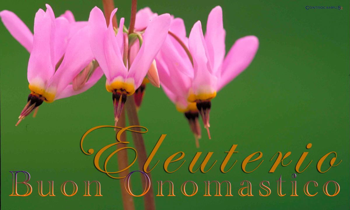 Immagini auguri buon onomastico per Sant Eleuterio