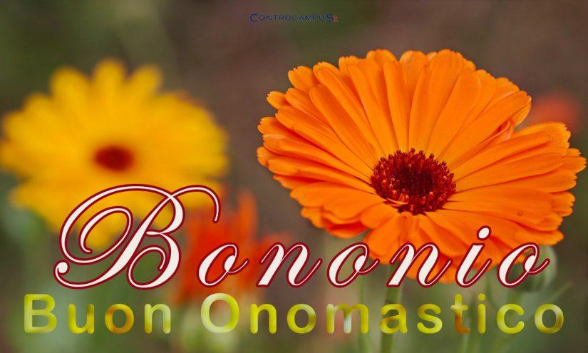 Immagini auguri buon onomastico per San Bononio