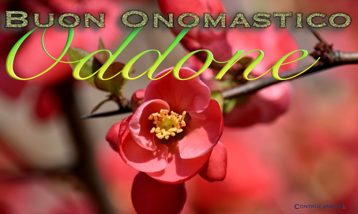 Immagine auguri onomastico Sant Oddone