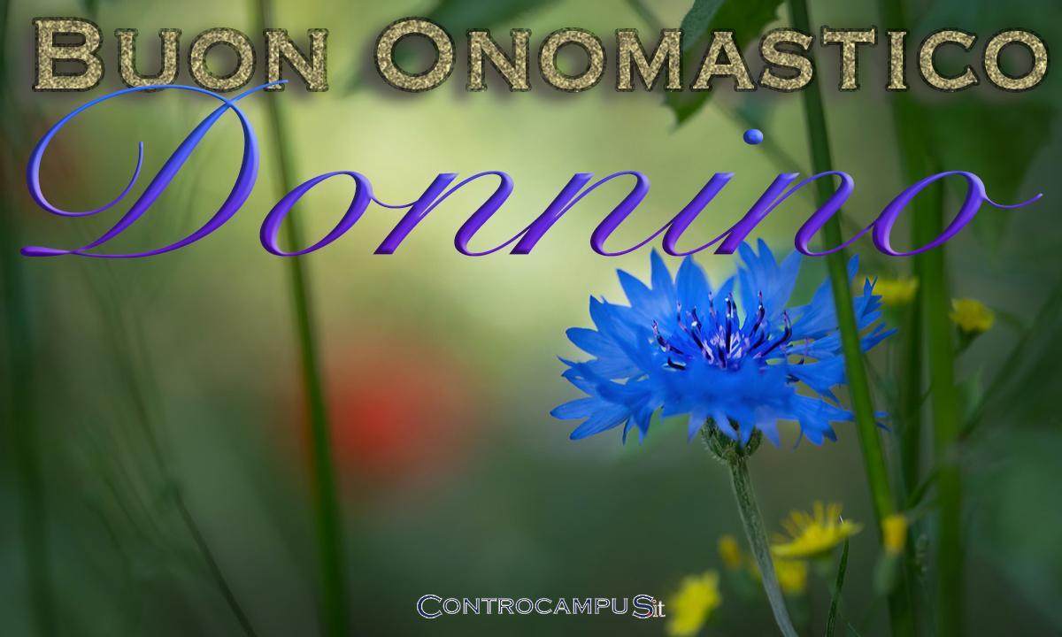 Immagini auguri buon onomastico per San Donnino
