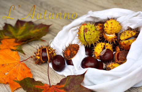 Immagini con frasi di buon autunno a tutti