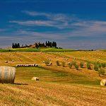 Bonus agricoli operatori e braccianti stagionali