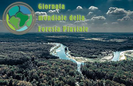 Giornata mondiale della Foresta Pluviale