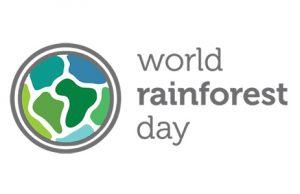 Immagini Giornata mondiale della Foresta Pluviale