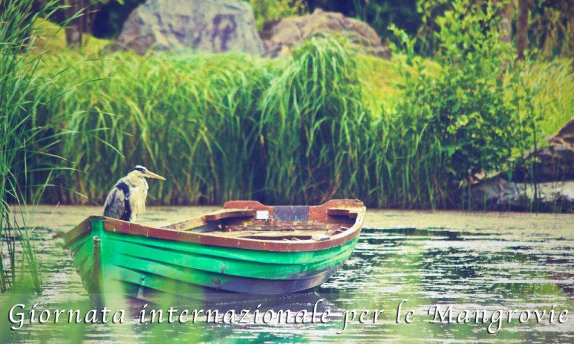 Immagini Giornata internazionale per le Mangrovie
