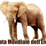 Immagini World Elephant Day