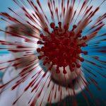 Cosa succede dopo il Coronavirus