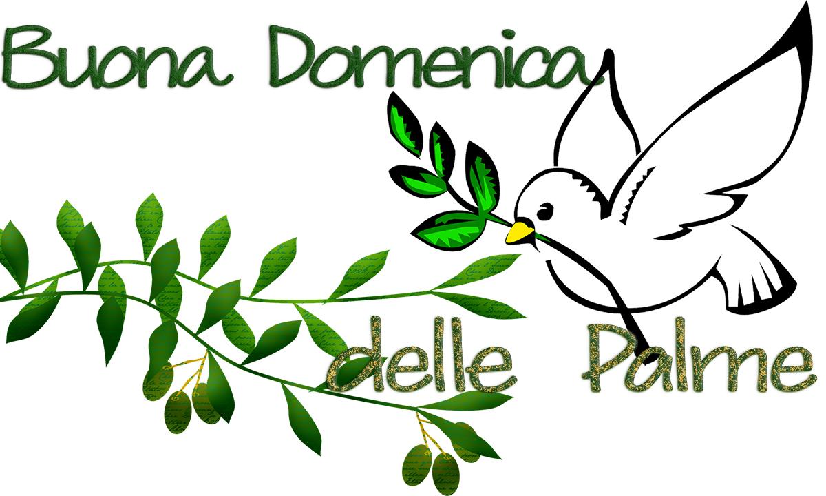 Buona domenica delle Palme 2021: frasi di auguri e immagini ulivo