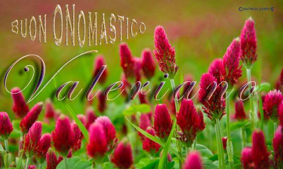 Immagini auguri buon onomastico per San Valeriano